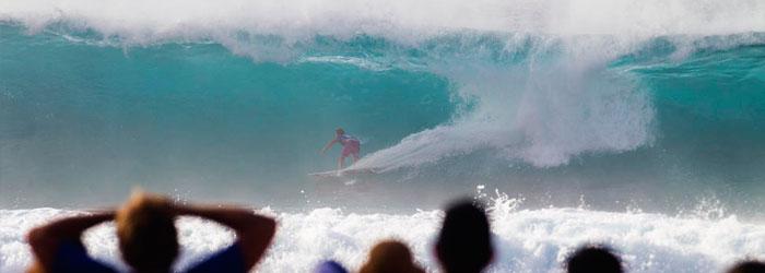 wilson-surfing