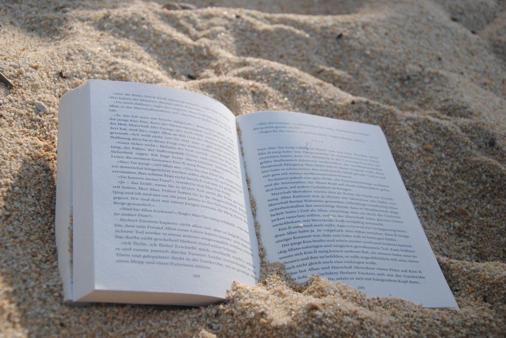 Wellenreiten Sprachurlaub