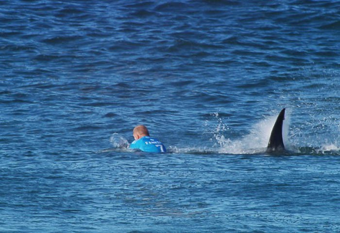 Mick Fanning being attacked by a shark at J-Bay