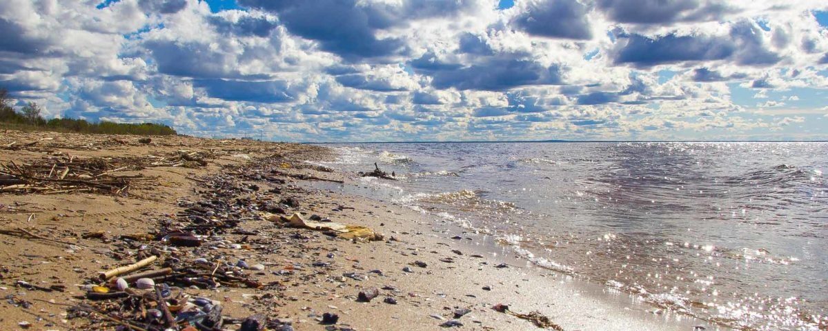 preserve-environment-as-a-surfer