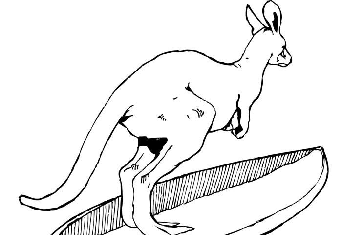 Sachen-gibts-Känguru