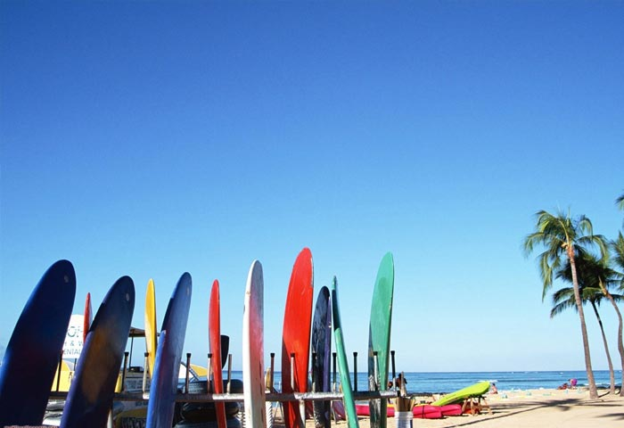 surf-boards