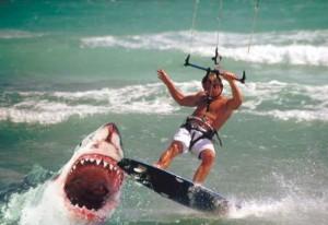 Surfen-ungefahrlich